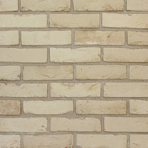 Brick Slips Tile Blend 35 - Sample Panel