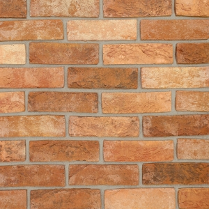 Brick Slips Tile Blend 89 - Sample Panel