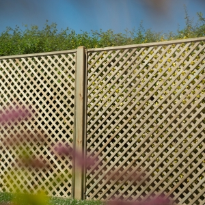 Rosemore Lattice - 180 x 180cm - Pack of 4