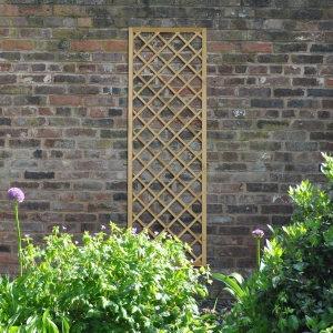 Hidcote Lattice - 180 x 60cm - Pack of 4