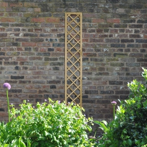 Hidcote Lattice - 180 x 30cm - Pack of 5
