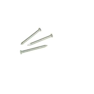 Masonry Nails 3.0mm x 60mm Box of 100 R-Mnl-30060