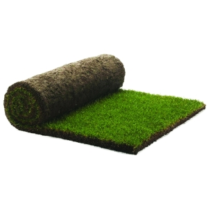 Rolawn Medallion Finest Exterior Multi Purpose Grass Turf Roll 1m2 RB000010