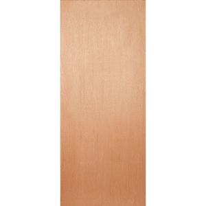 External Flush PWD Paint Grade Hollow Core Door
