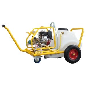 Bowser Washer Mini Petrol
