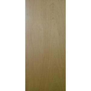 External Door Blank Fire Door 30 min 44 x 2440 x 1220mm