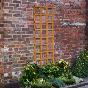 Larchlap Dip Treated Garden Trellis Panel 1830mm x 610mm