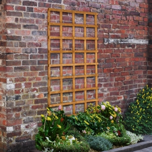 Heavy Duty Trellis - 183 x 91cm - Pack of 5