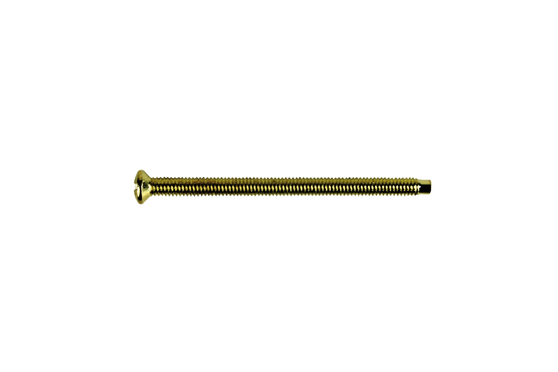 4TRADE Electrical Screw Extra Long 50mm Brass PK50