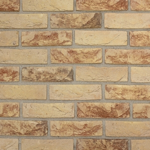 Brick Slips Tile Blend 30 - Sample Panel