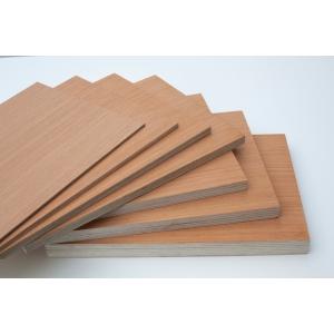 Plywood Cut Panel 12x1220x610mm