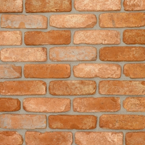 Brick Slips Tile Blend 5 - Sample Panel